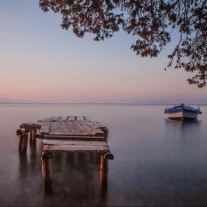 next_big_brand_Spiros_Gogas_Wooden_View - little_boat